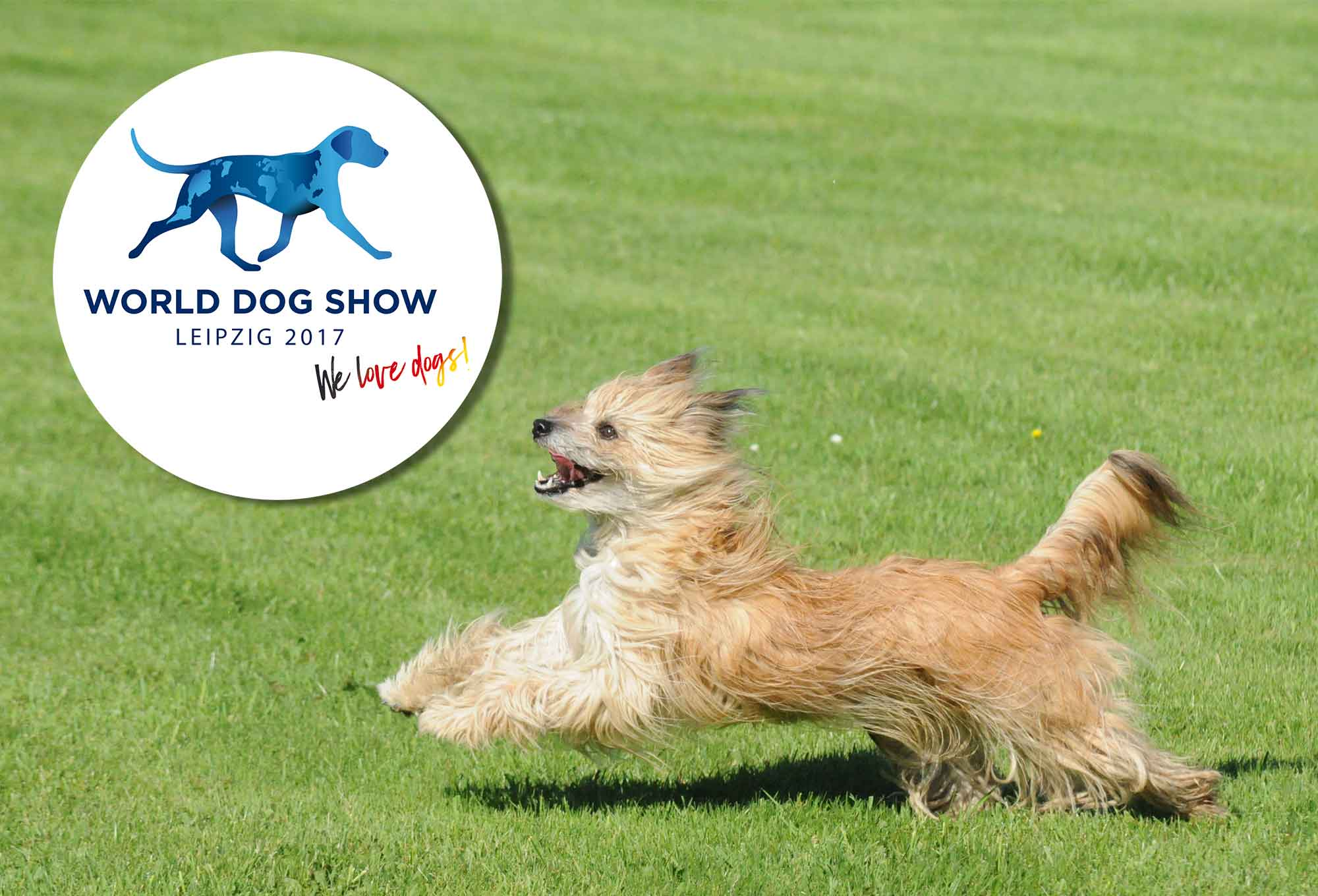 cbp-Rahmenprogramm zur World Dog Show